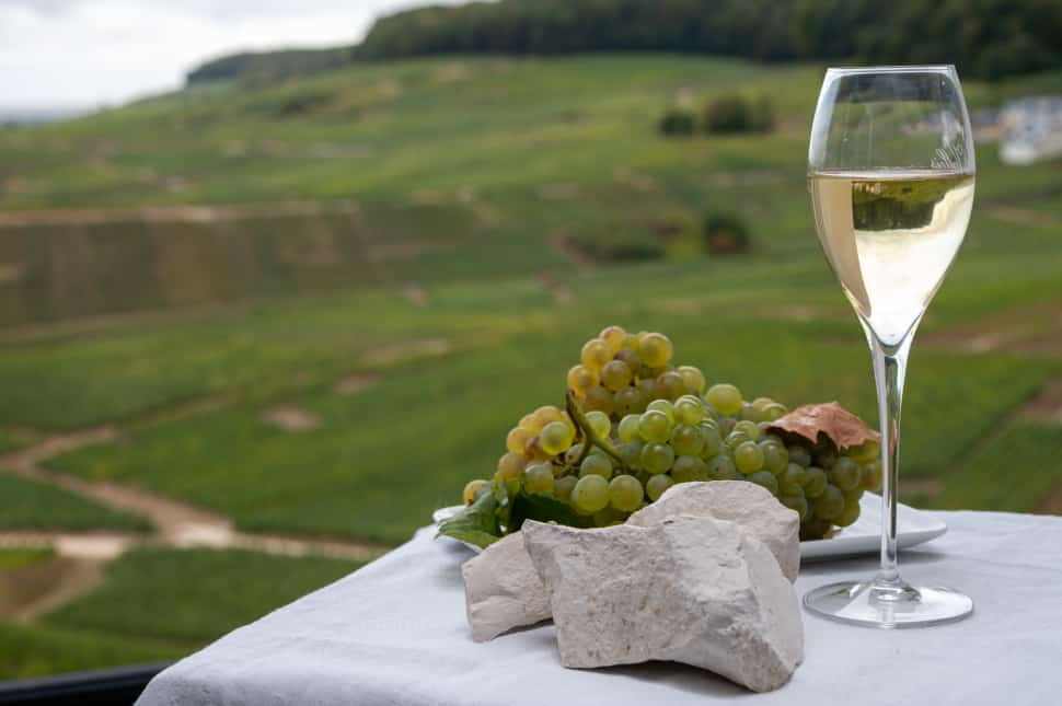 Chardonnay comes from green-skinned grapes which are a cross between Pinot Noir and Gouais Blanc.