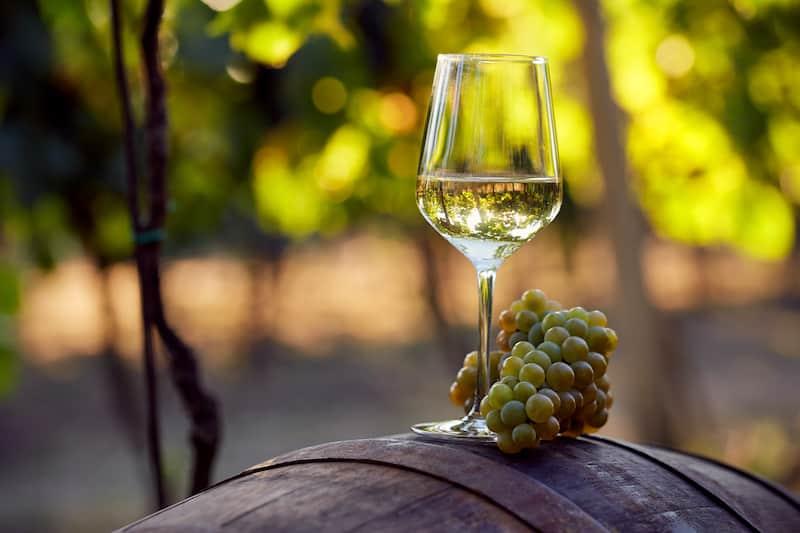 Oaked vs Unoaked Chardonnay Taste