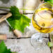 What is Chardonnay Wine? History, Tasting Notes, and Pairing Tips