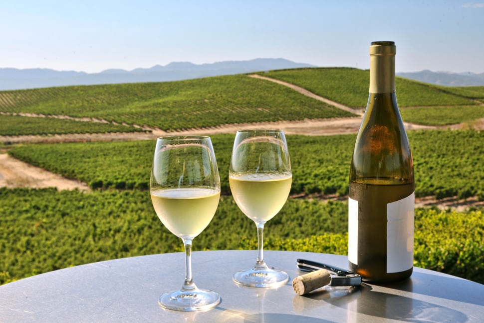 Chardonnay wine pairing tips, tasting notes and history.